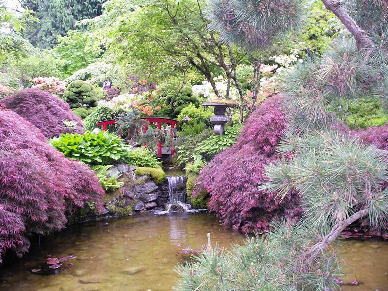 Садовый дизайн фото